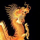 Aislante chino del dragón en negro Imagen de archivo
