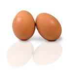 Aislante de dos huevos en el fondo blanco Imagenes de archivo