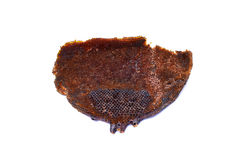 Aislante de la abeja de la colmena en el fondo blanco Foto de archivo libre de regalías