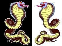 Aislante de la cobra de la serpiente en el fondo blanco imagen de archivo