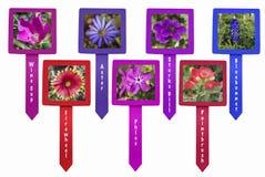 Aislante de las etiquetas de plástico del Wildflower Foto de archivo libre de regalías