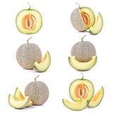 Aislante maduro del melón del cantalupo en un fondo del blanco (PA que acorta Imagen de archivo