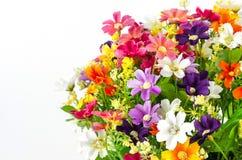 Aislante plástico de las flores en el fondo blanco, flores falsas imagen de archivo