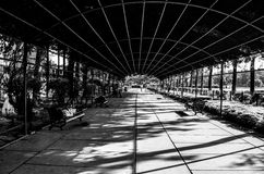 The Aisle. Entrance of Zakir rose garden, sector-16, chandigarh, india Royalty Free Stock Image