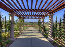 Aisle to the Vineyard. A pathway leads people out to the vineyard Royalty Free Stock Images