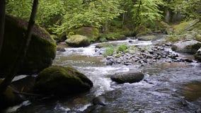 Aist-Tal in Österreich im Fall stock footage