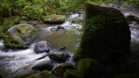 Aist-Tal in Österreich im Fall stock video