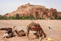 AIT Benhaddou Kasbah em Marrocos Fotografia de Stock Royalty Free