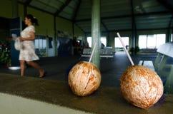 Aitutaki Airport in Aitutaki Lagoon Cook Islands. AITUTAKI - SEP 17:Tow coconuts with straws in Aitutaki airport terminal on Sep 17 2013.It was constructed by Stock Photo