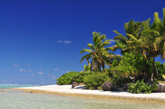 Aitutaki Island Beach Stock Images