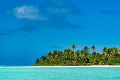 Coconut tree on Polynesia beach Wonderful lagoon Stock Photography