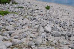 Aitutaki Morski centrum badań, Kucbarskich wysp plaża Fotografia Stock