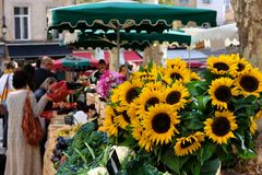 Aix-en-Provence, France - October 18, 2017 : people buying veget. Ables and flowers in the central provence market Stock Photography