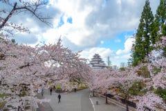 Aizuwakamatsu Japan - April 15, 2016: Tsurugajo slott & x28; Aizuwa Fotografering för Bildbyråer