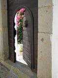 Ajar gate. Peeking through the ajar gate Stock Photo