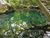 Ajardina o mar da natureza Imagem de Stock Royalty Free