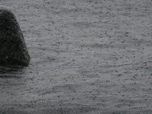 Ajardina o mar da natureza Imagens de Stock Royalty Free