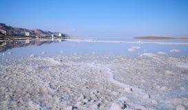 Ajardina o Mar Morto mineral dos termas Imagens de Stock