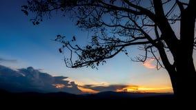 ajardina o por do sol da natureza em Tailândia Foto de Stock