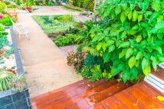 Ajardinado do jardim Foto de Stock Royalty Free