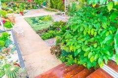 Ajardinado do jardim Imagem de Stock