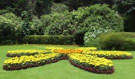 Ajardinando flores do jardim com árvores aparadas Imagem de Stock