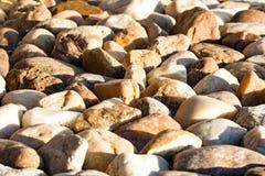 Ajardinando o fundo de pedra Fotos de Stock Royalty Free