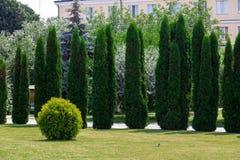 Ajardinando o gramado verde Fotos de Stock Royalty Free
