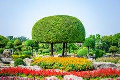Ajardinando o parque aparado das árvores em público Foto de Stock