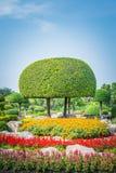 Ajardinando o parque aparado das árvores em público Imagens de Stock Royalty Free