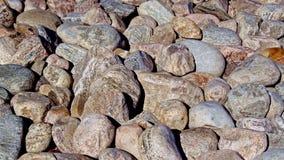 Ajardinando pedras em tamanhos sortidos e em cores Fotografia de Stock