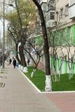 Ajardinando ruas dos gramados Imagem de Stock