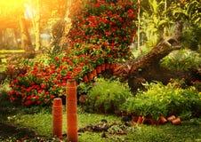 Ajardinar asiático bonito do jardim formal Imagem de Stock