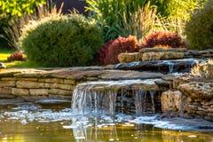 Ajardinar bonito com plantas bonitas Fotos de Stock Royalty Free