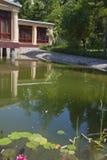 Ajardinar bonito do lago Fotografia de Stock