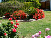 Ajardinar bonito em um jardim da frente fotografia de stock royalty free