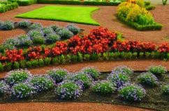 Ajardinar colorido no parque Fotografia de Stock