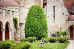 Ajardinar com árvores decorativas Imagem de Stock