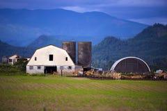 Ajardinar com campo de exploração agrícola e vacas e celeiro Fotografia de Stock Royalty Free