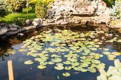 Ajardinar da lagoa do jardim Imagem de Stock