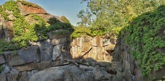 Ajardinar da pedra Fotografia de Stock