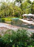Ajardinar da piscina do recurso do ecoturismo Imagens de Stock