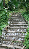 Ajardinar de pedra natural das escadas Imagens de Stock Royalty Free