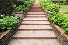 Ajardinar de pedra natural das escadas Imagem de Stock