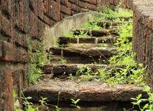 Ajardinar de pedra natural das escadas Fotografia de Stock Royalty Free