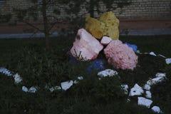 Ajardinar de pedra natural no jardim home Imagens de Stock Royalty Free