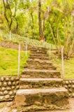 Ajardinar de pedra natural no jardim home com escadas Fotos de Stock