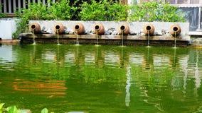 Ajardinar decorado com a planta carnuda em pasta da vista dianteira Imagem de Stock Royalty Free