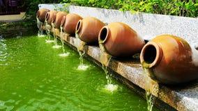Ajardinar decorado com a planta carnuda em pasta em ascendente fechado Imagem de Stock
