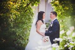 Ajardinar do casamento Fotos de Stock